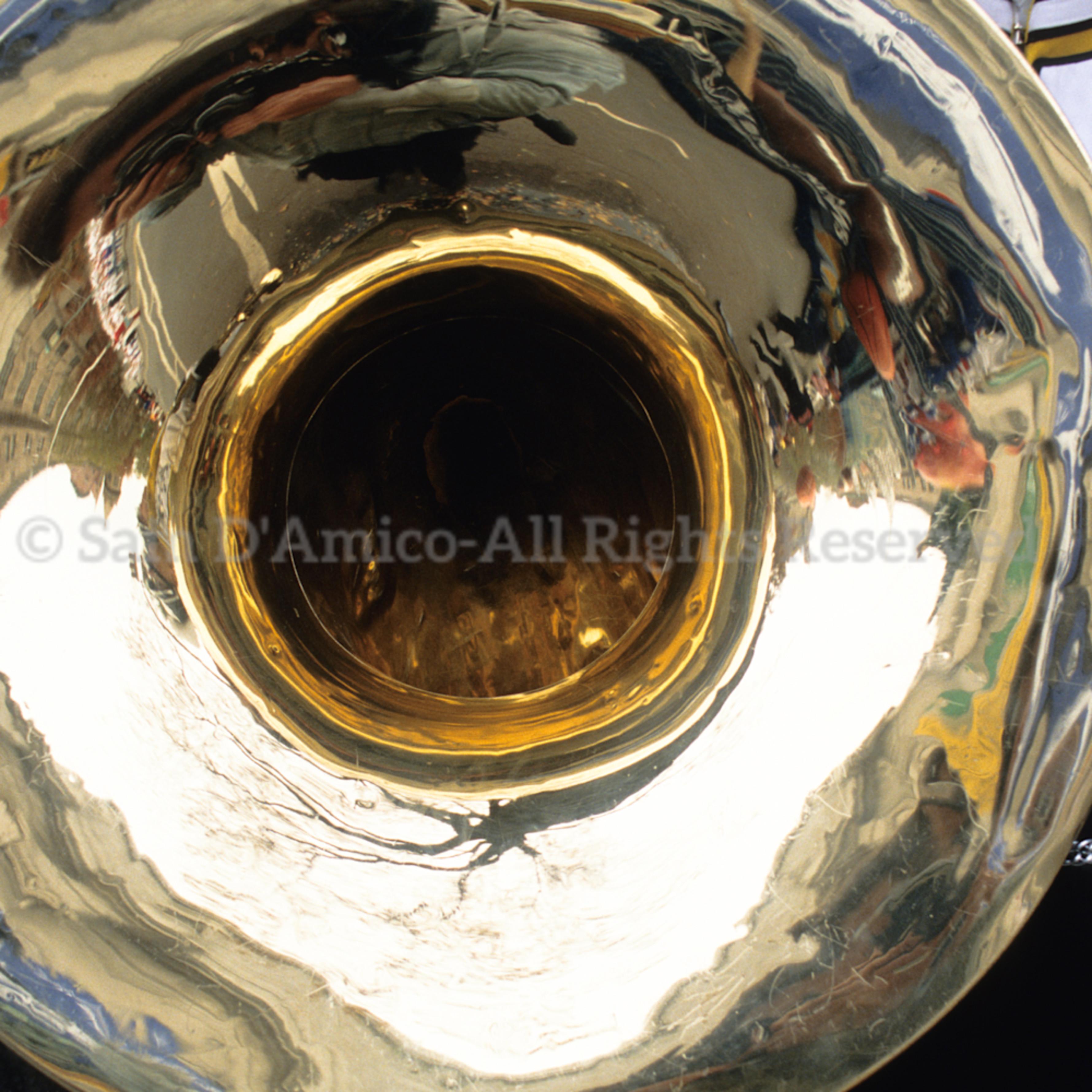 Musician uniform holds tuba lehkie