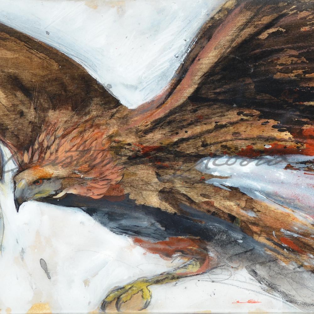 Raptor in flight gjjsc5