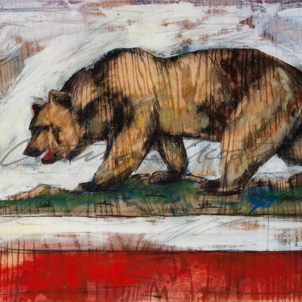 California bear flag print zavvvj