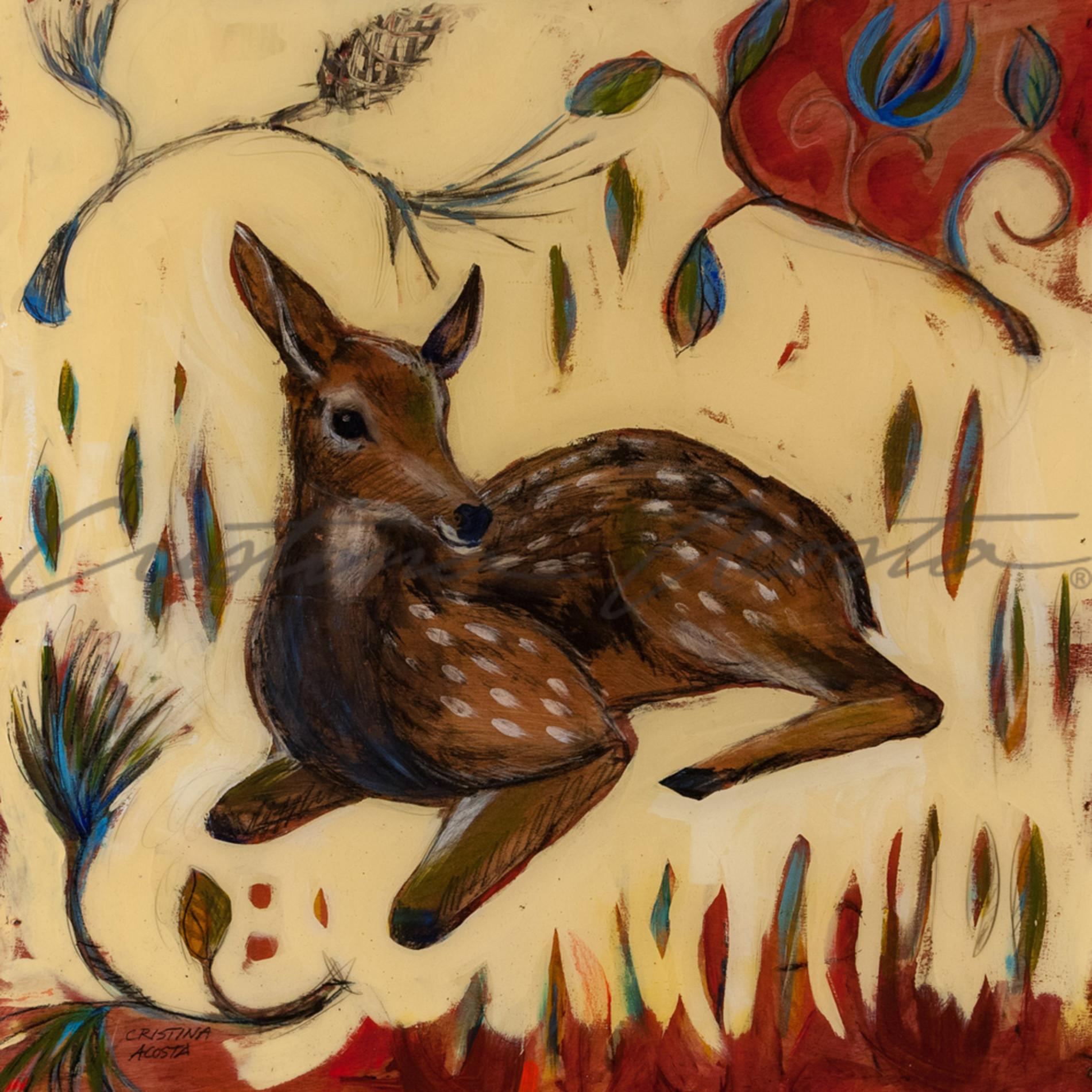 20150131 woodland fawn 22 sf1jzz