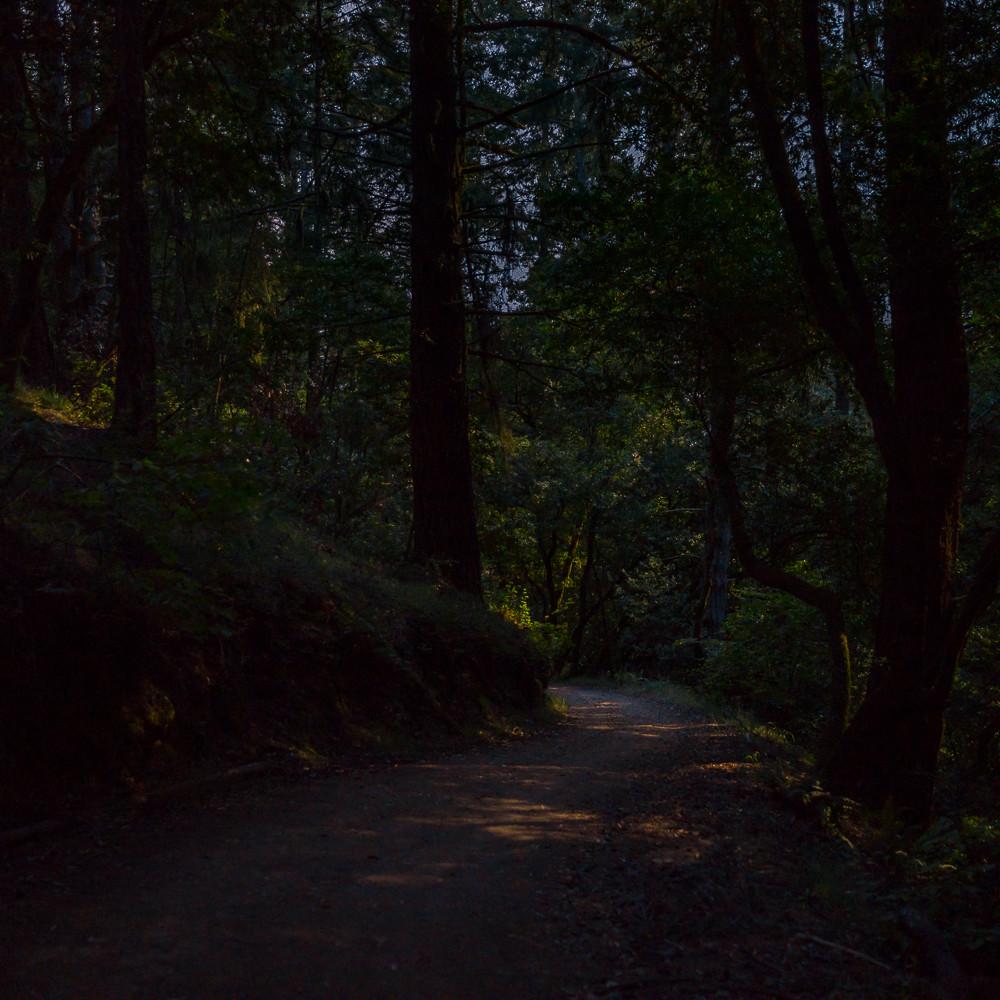 20140806 nocturne deer park fire road dsc1785 bywnra