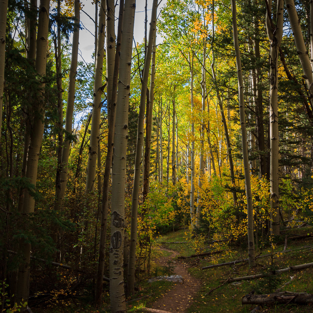 20120929 autumn rio en medio trail img 1876 mroulm