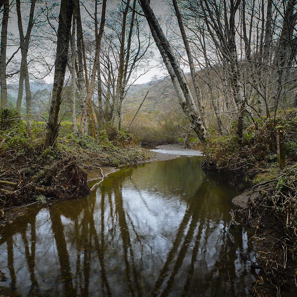 20120208 redwood creek p1010114 panoa01 hngvi8