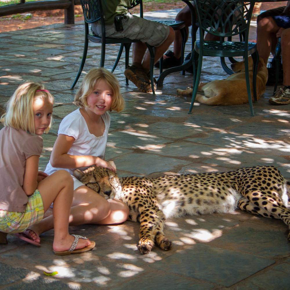 20101216 cheetah cuddles img 2288 idibh4