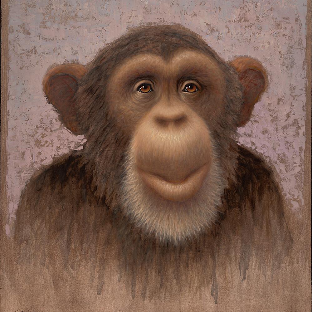 Chimp byoqpr