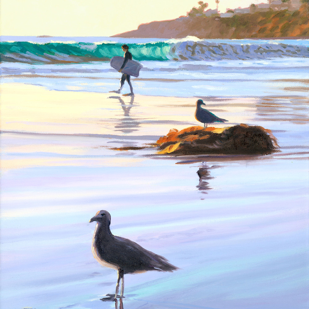 Boogie boarder and birds behjvo