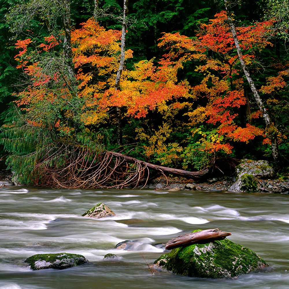 Fall river wnxtca