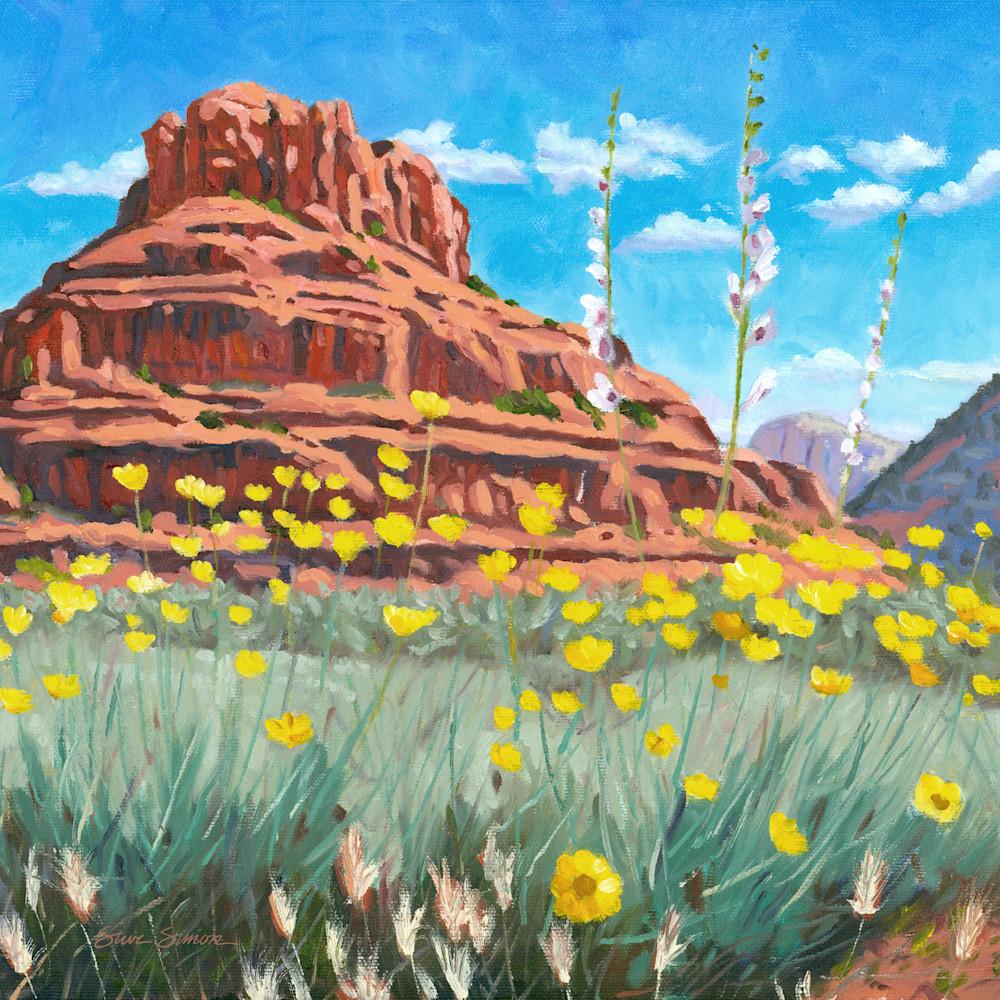 Bell rock desert marigolds pcq3gg