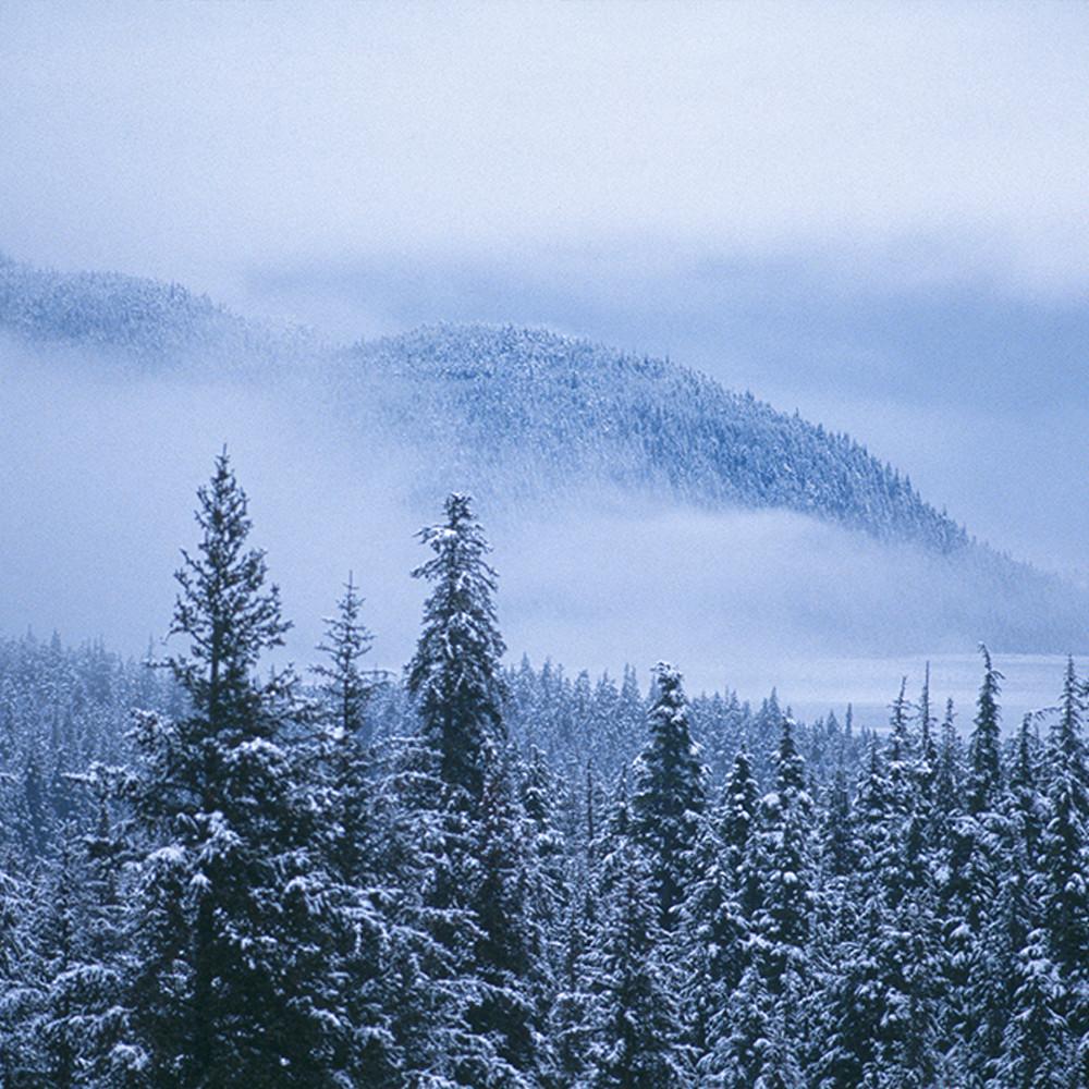 Early snow 2 wlzmur