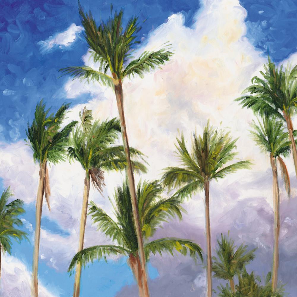 Palms u0hnps