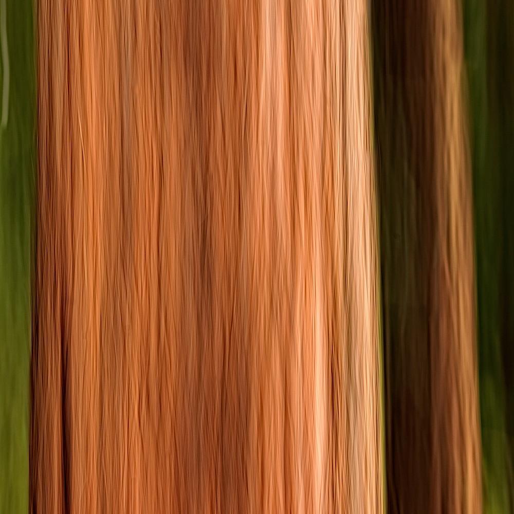 Redwood grove i 2 gobjlt