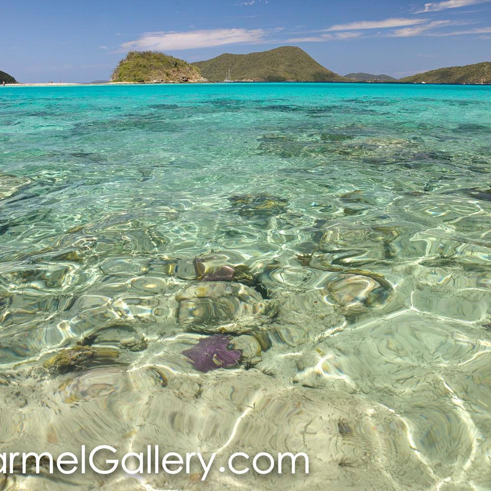 Caribbean blue krojnb