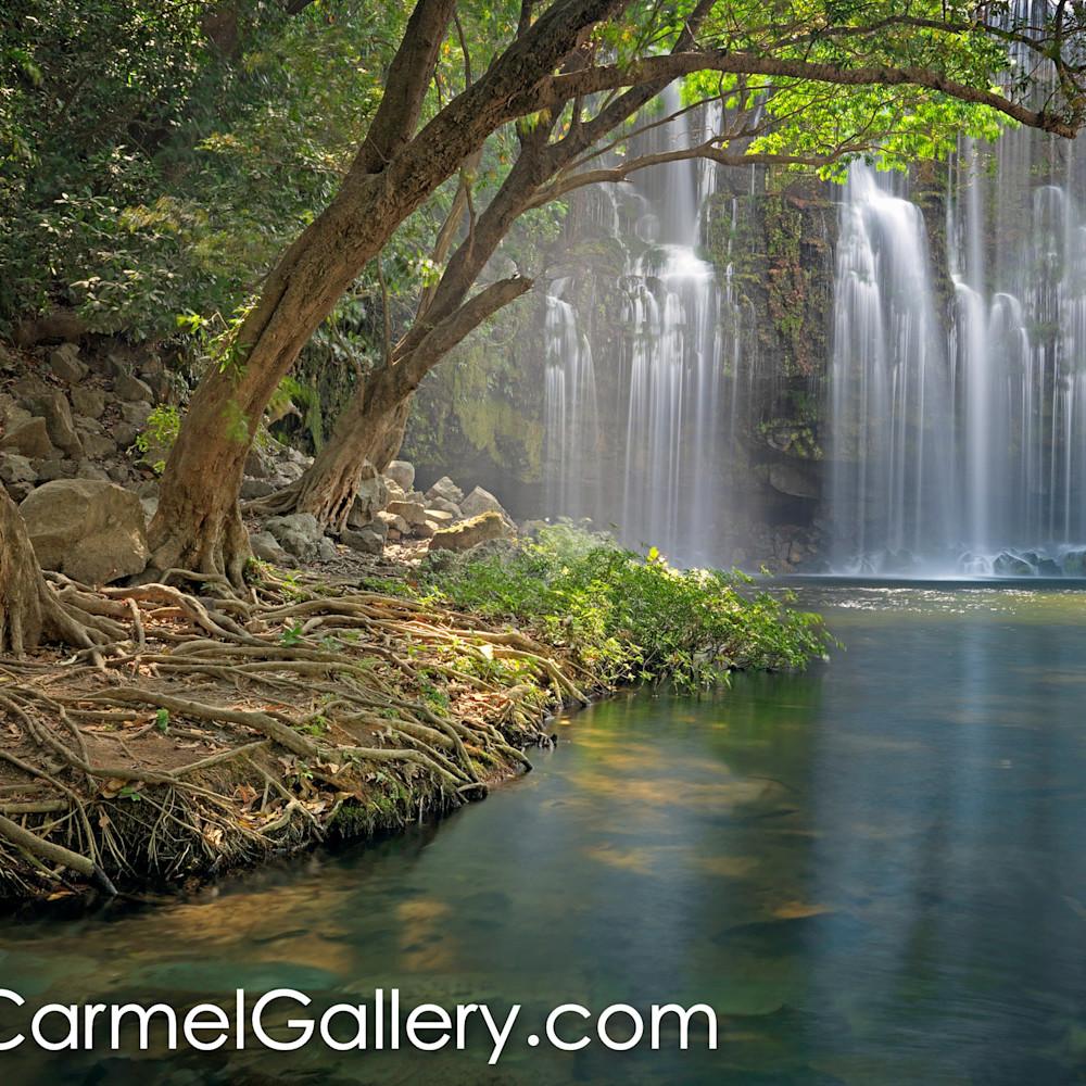 Tropical oasis costa rica jdrcqe