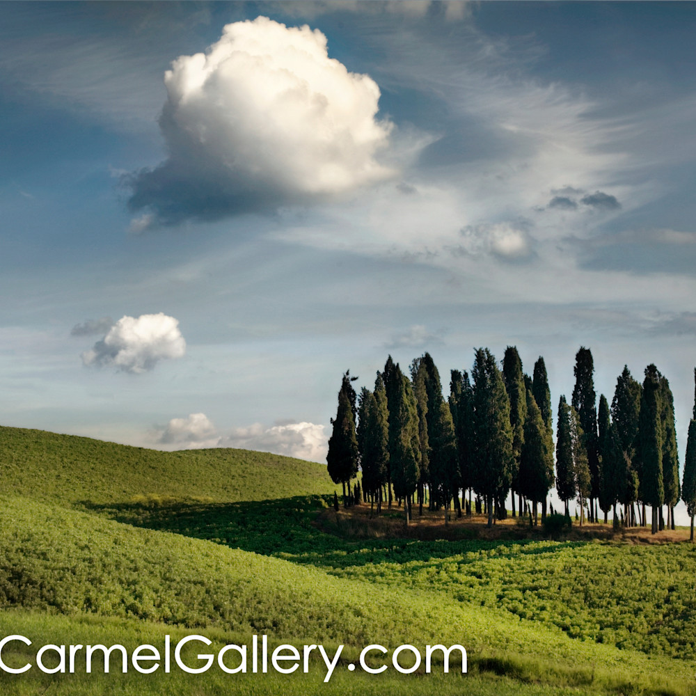 Cypress grove tuscany irm4r6