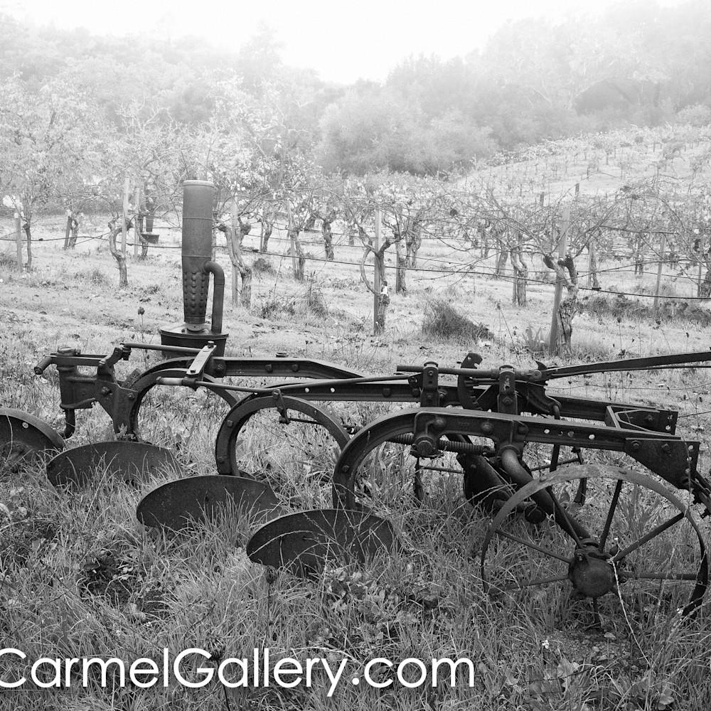Early farm vineyard bw wwujr7