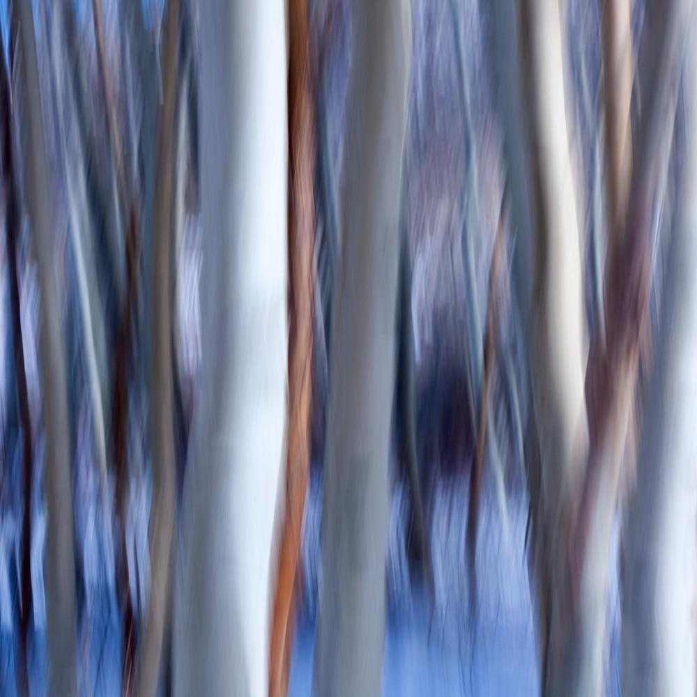 Aspen abstract 2 ijgmly