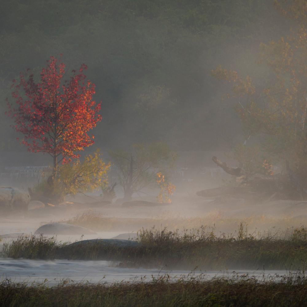 Misty morning mw7y54