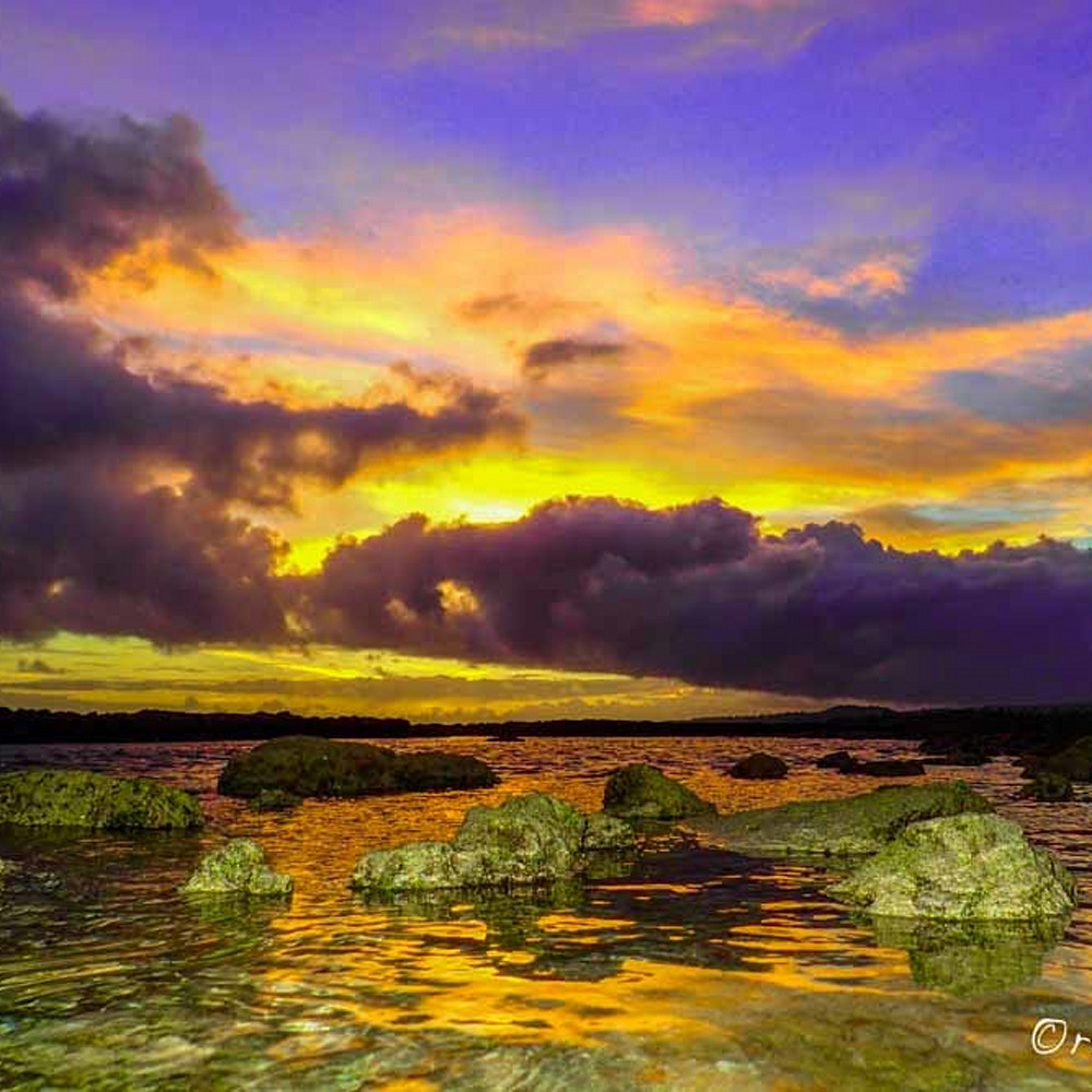 Purple sunrise hlz6kx