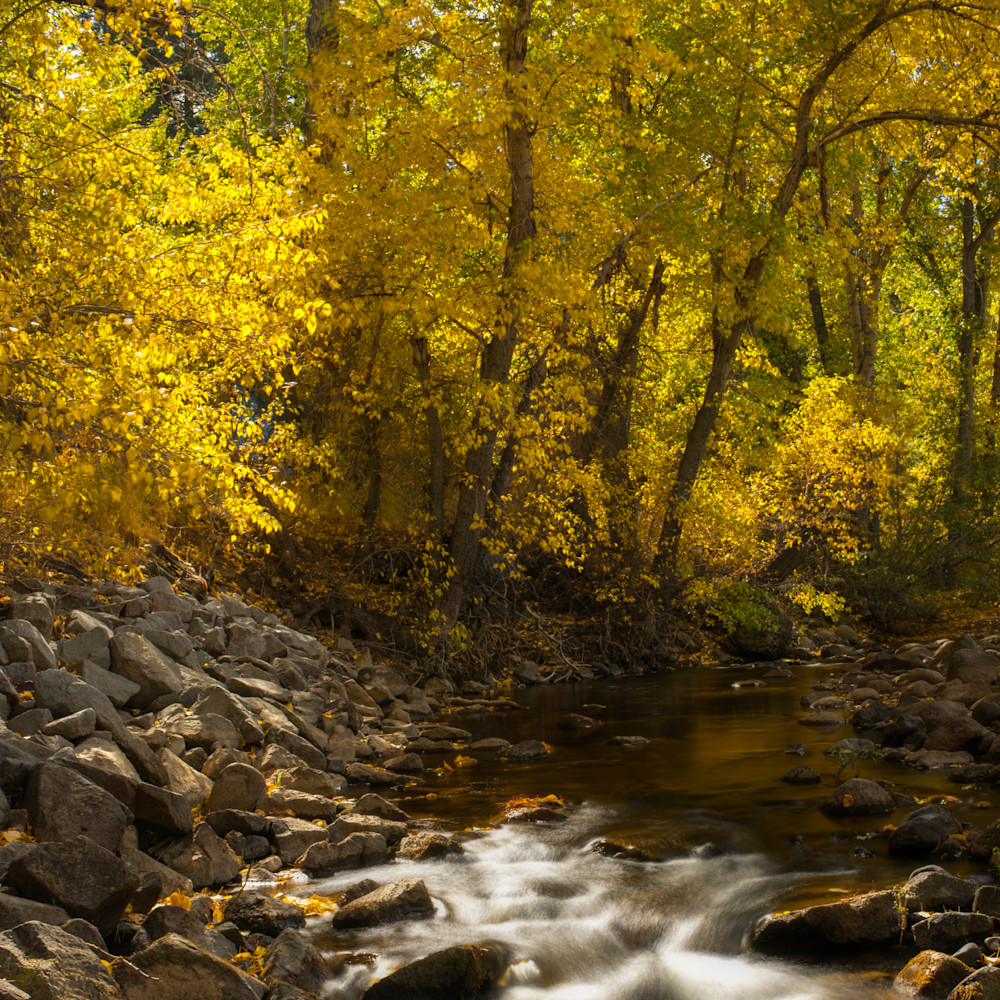 Markleville river fall colors y5wfyr