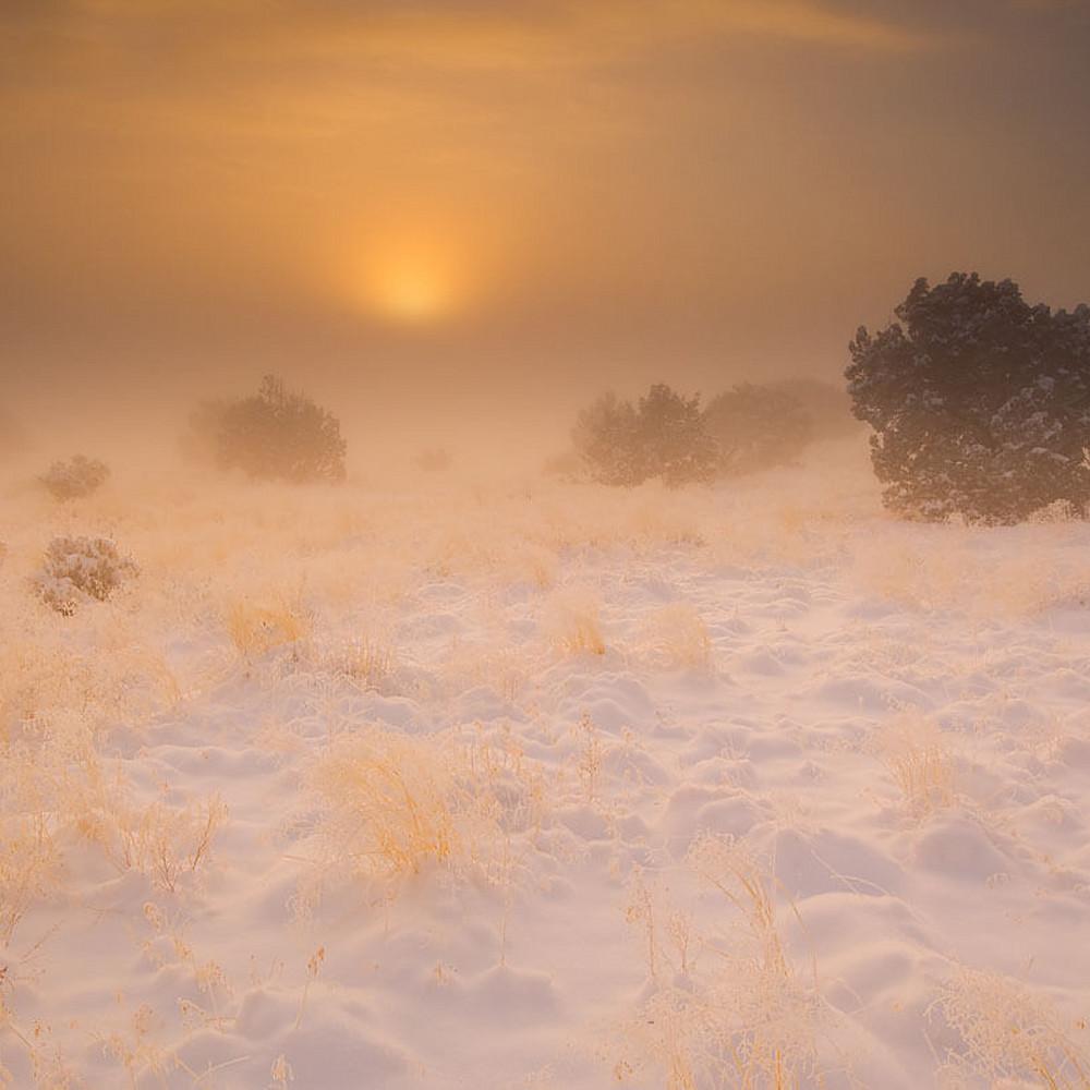 Snow dreams arn9ai