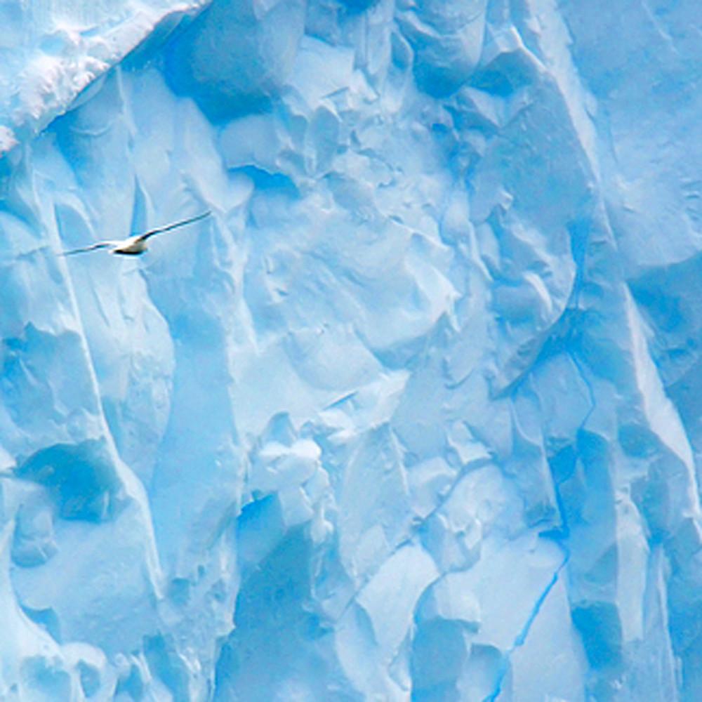Snowscapes and polar regions 003 m7qa3l