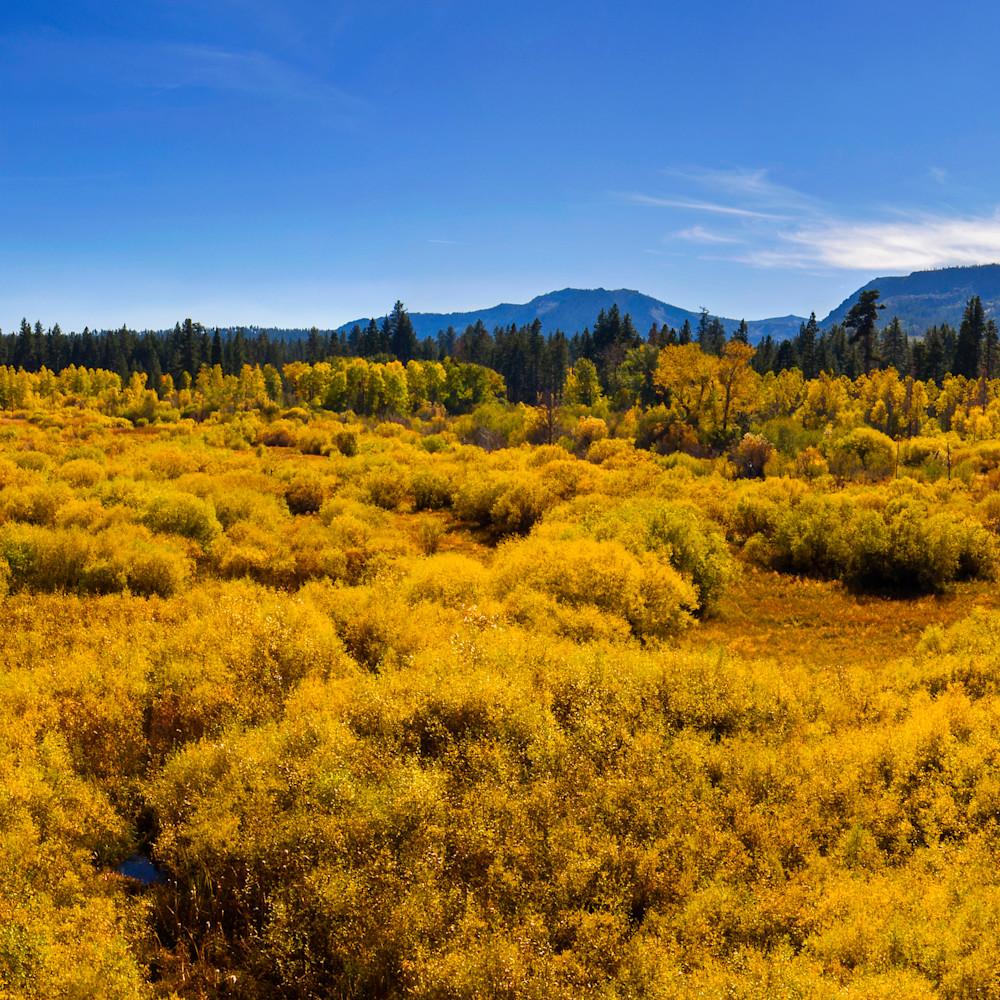 Kiva meadow fall colors aerial pano 20x60 efvjkj