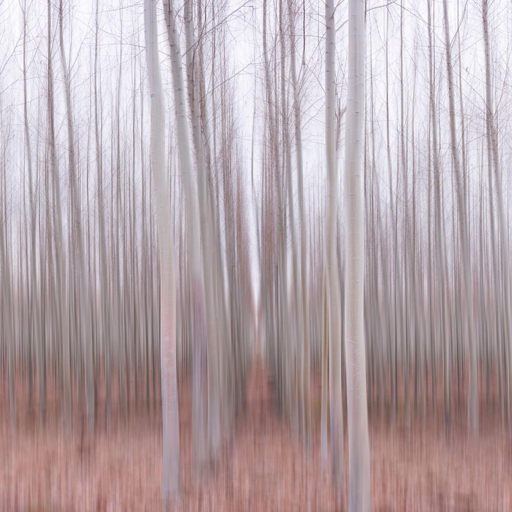 Aspen blur uwwosf