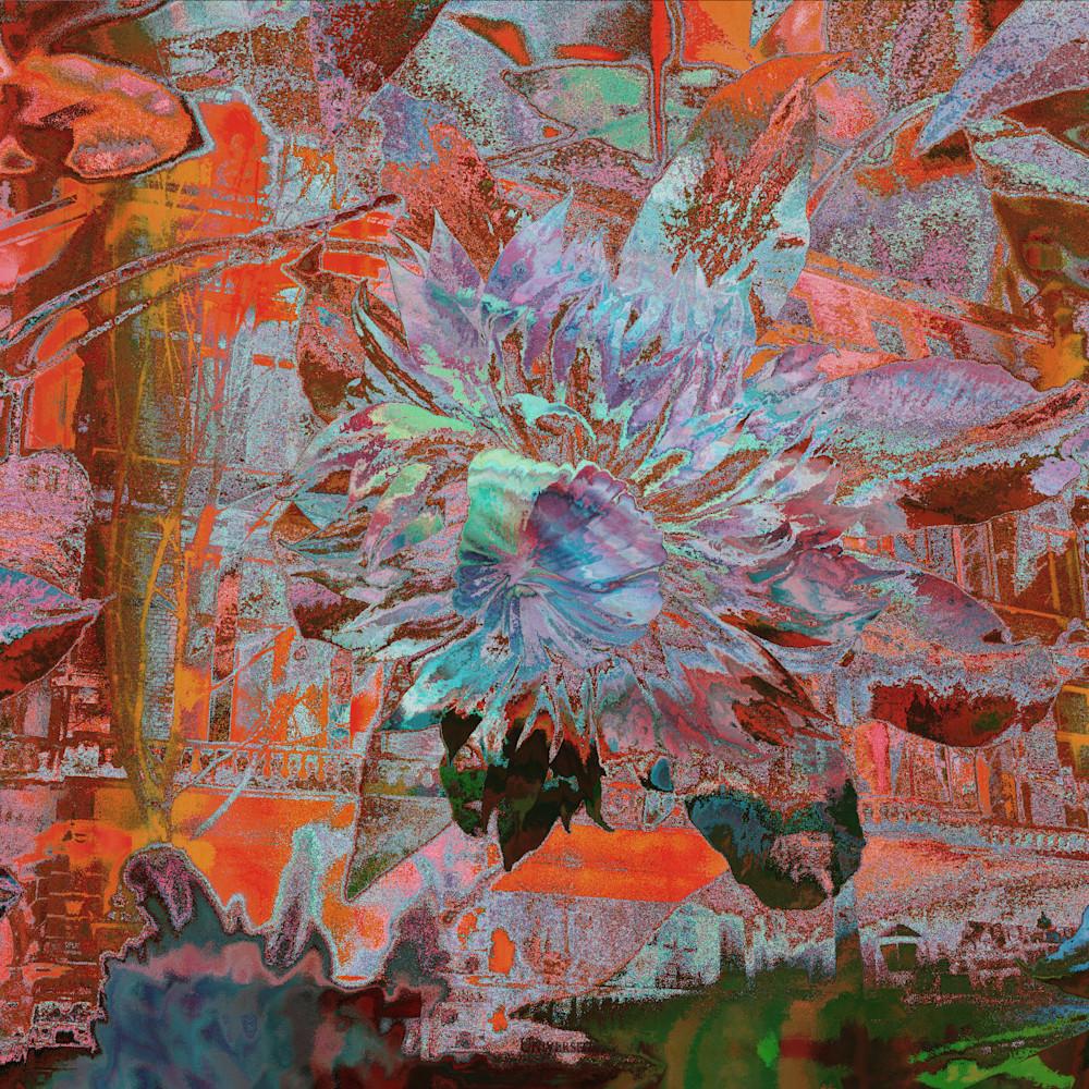 Clematis in a metallic dream n49txj