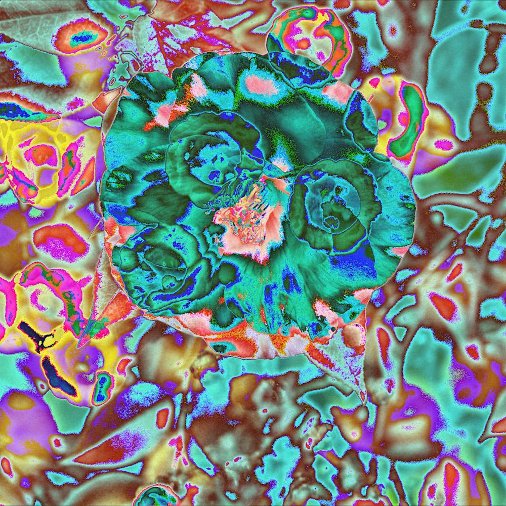 Fluted cobalt camellia iuvbfe