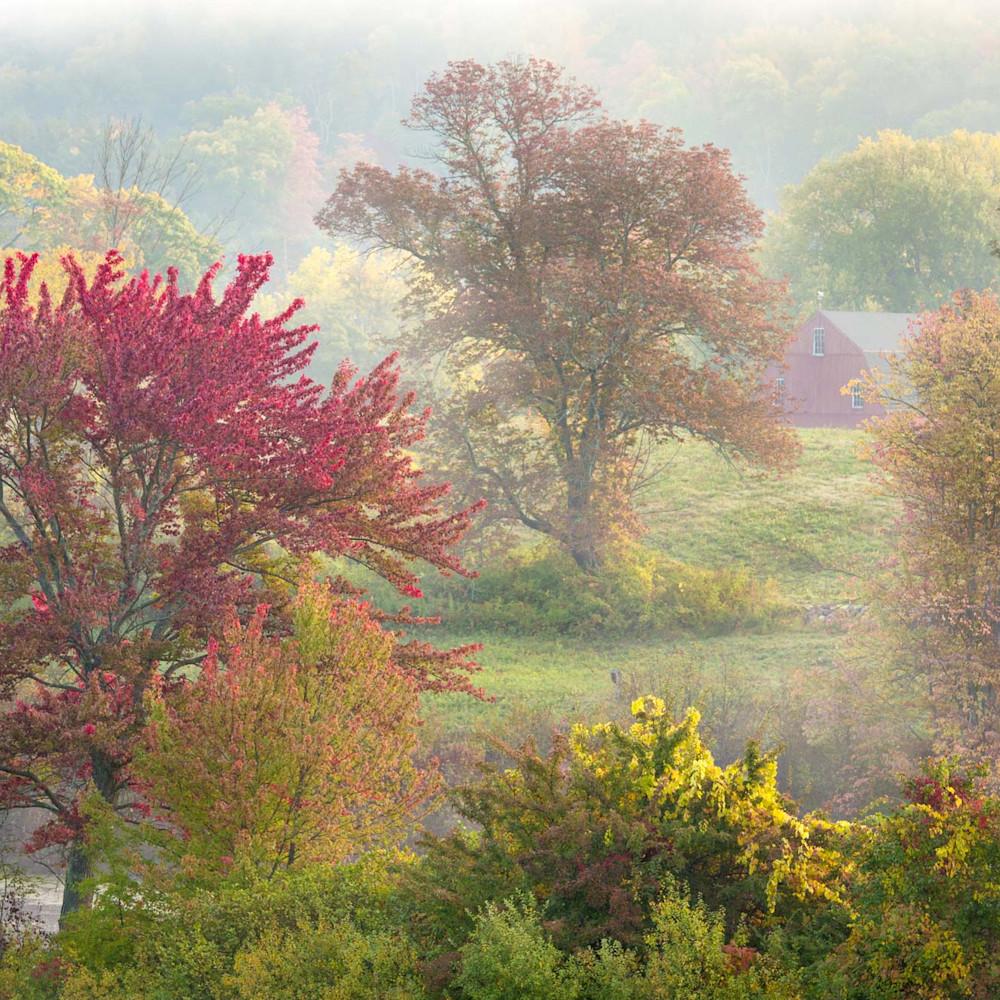 Autumnspalette ct frmgton hill steid 2015 10 11 2733 webopt ozvbrh