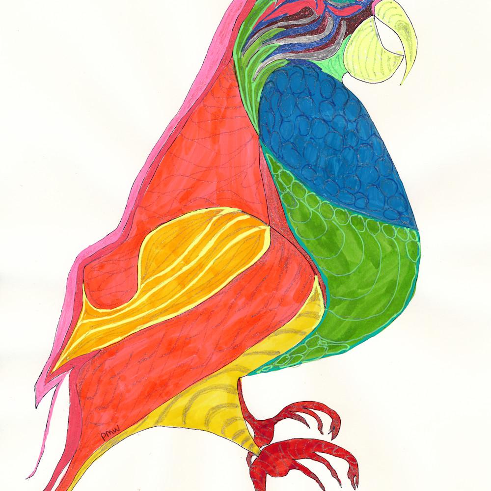 Pam white parrot wtqpwf
