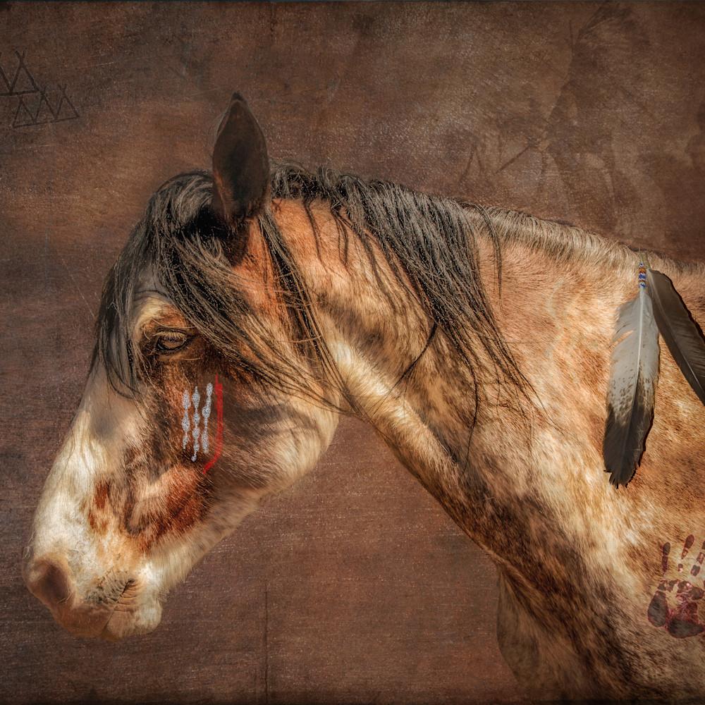 War pony jyudda