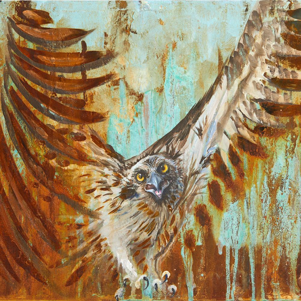 Rusty osprey ushwxl