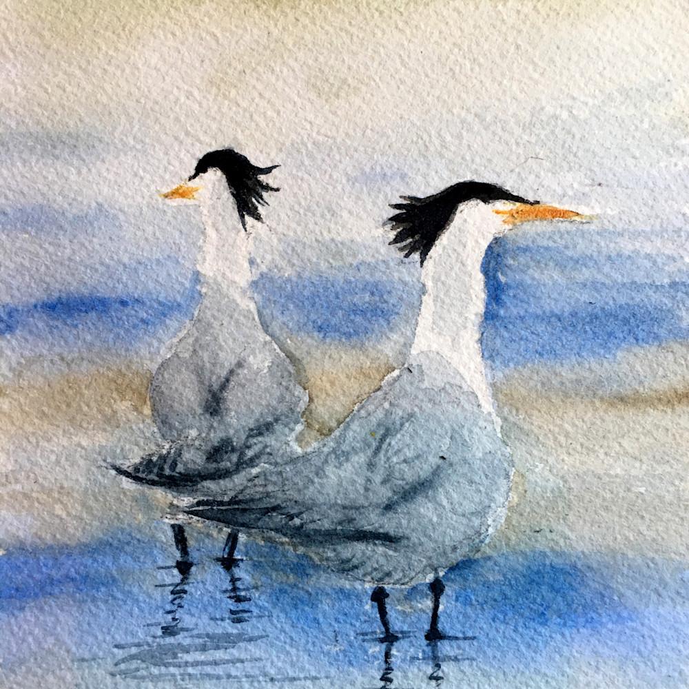 One good tern r31b25