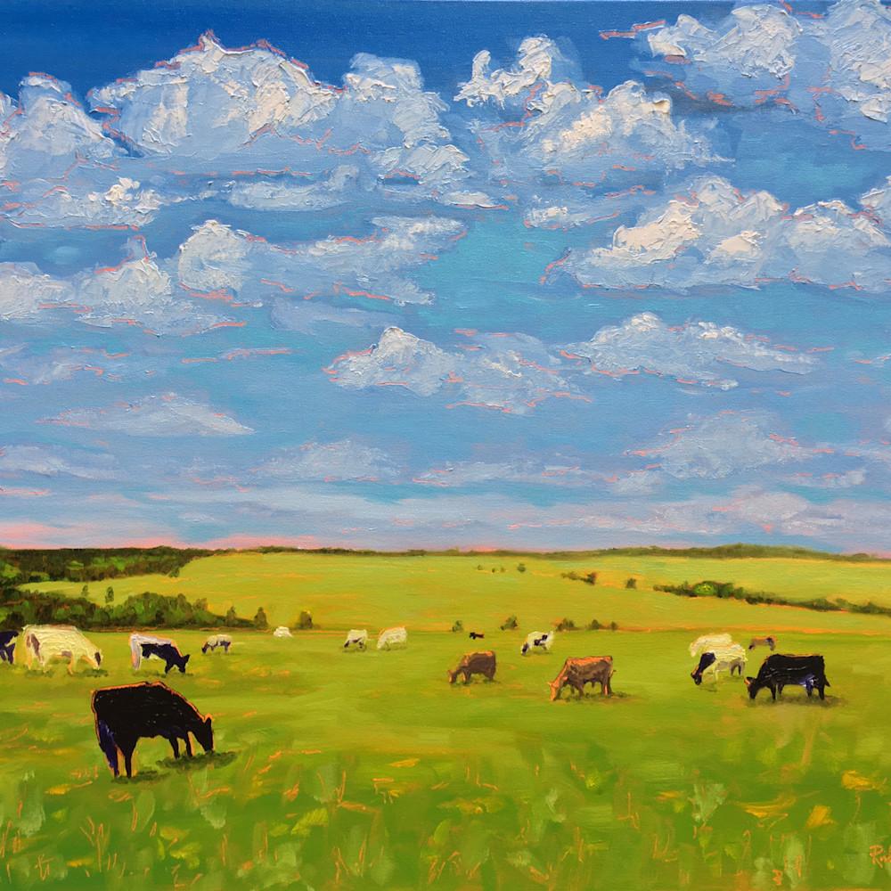 Cows under clouds rick osborn xpt7mu