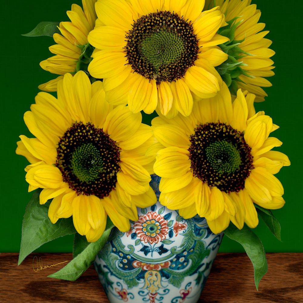 080501 ahern sunflowers in a makkum pot 30x40x300 sviqt6