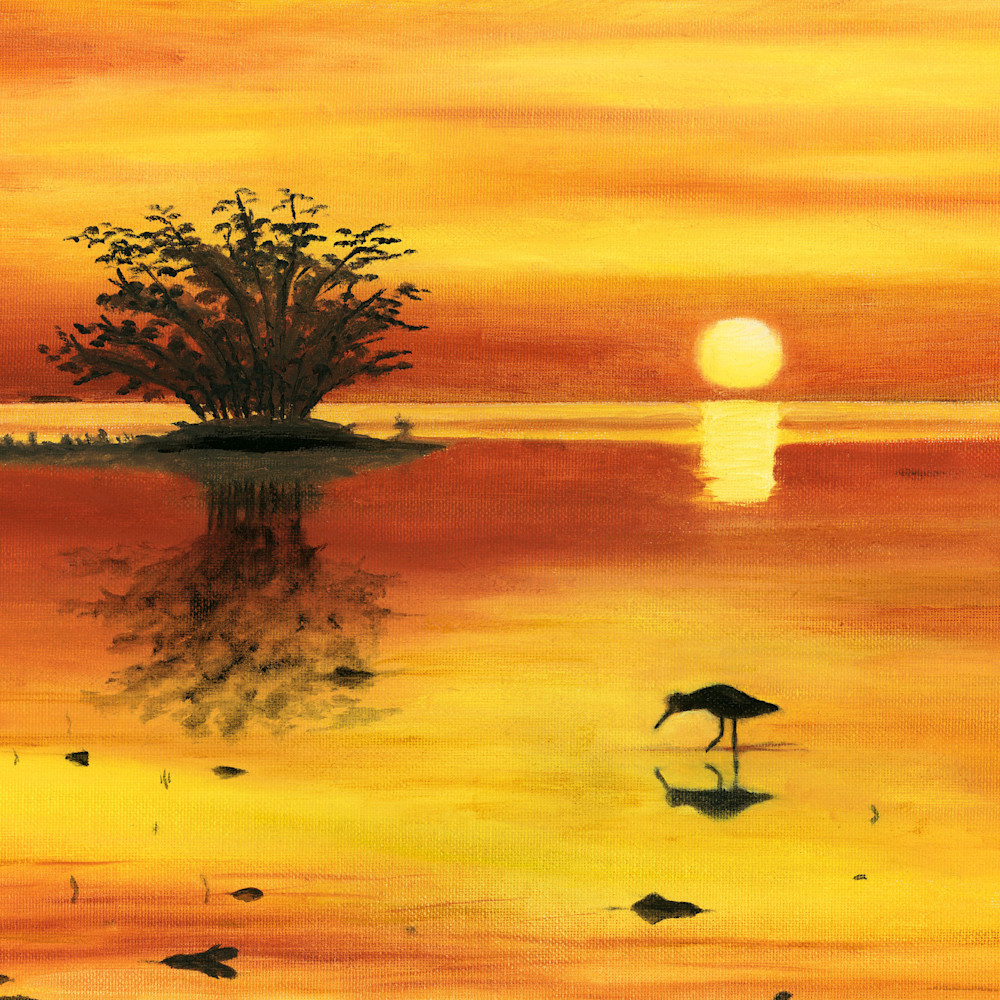 Orange sunset vertical hvduvy