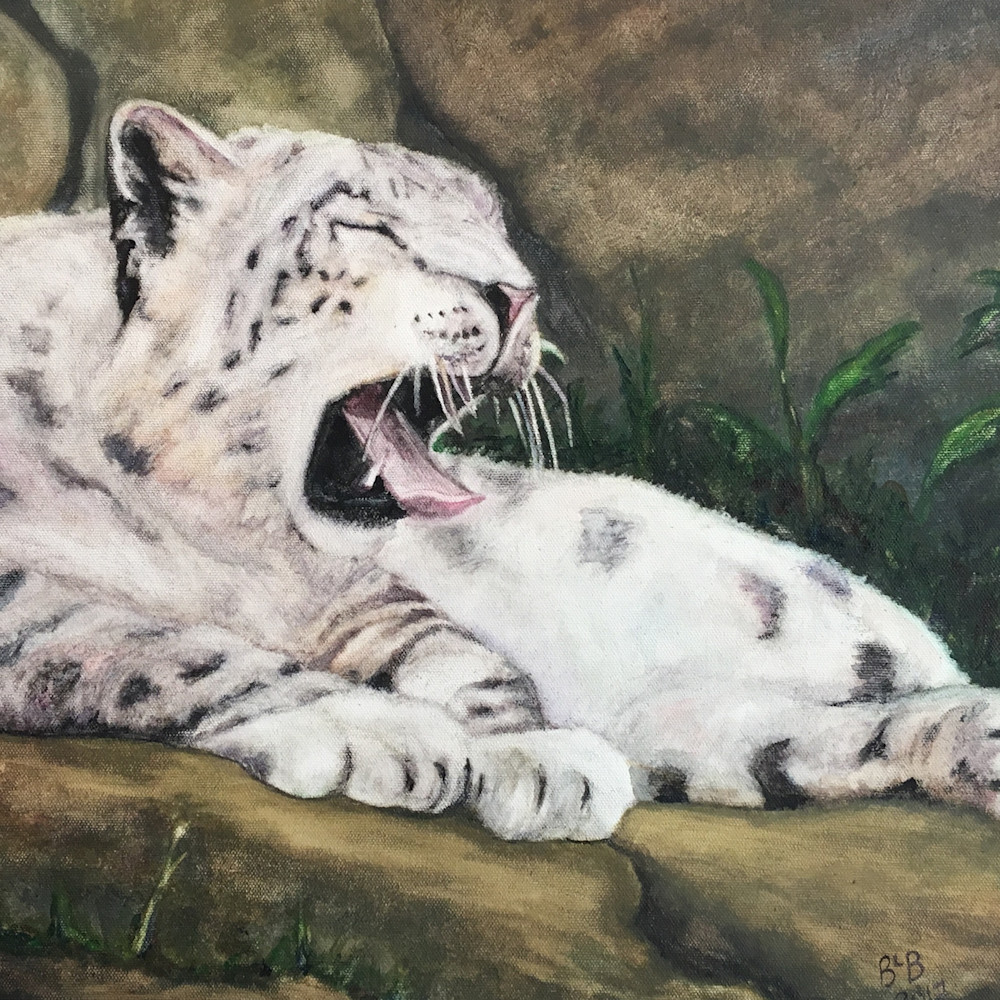 Snow leopard for 12x18 vjagko