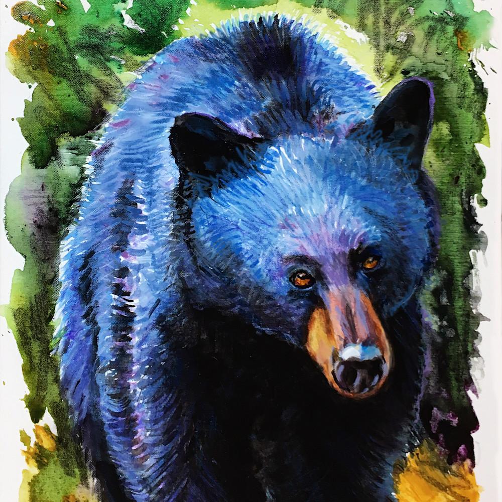 Bear 1 300 dssiqo