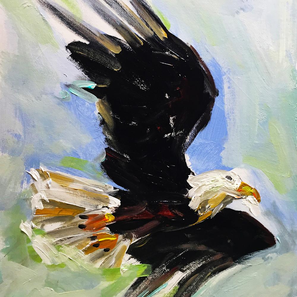 Bald eagle 300 ldho2m