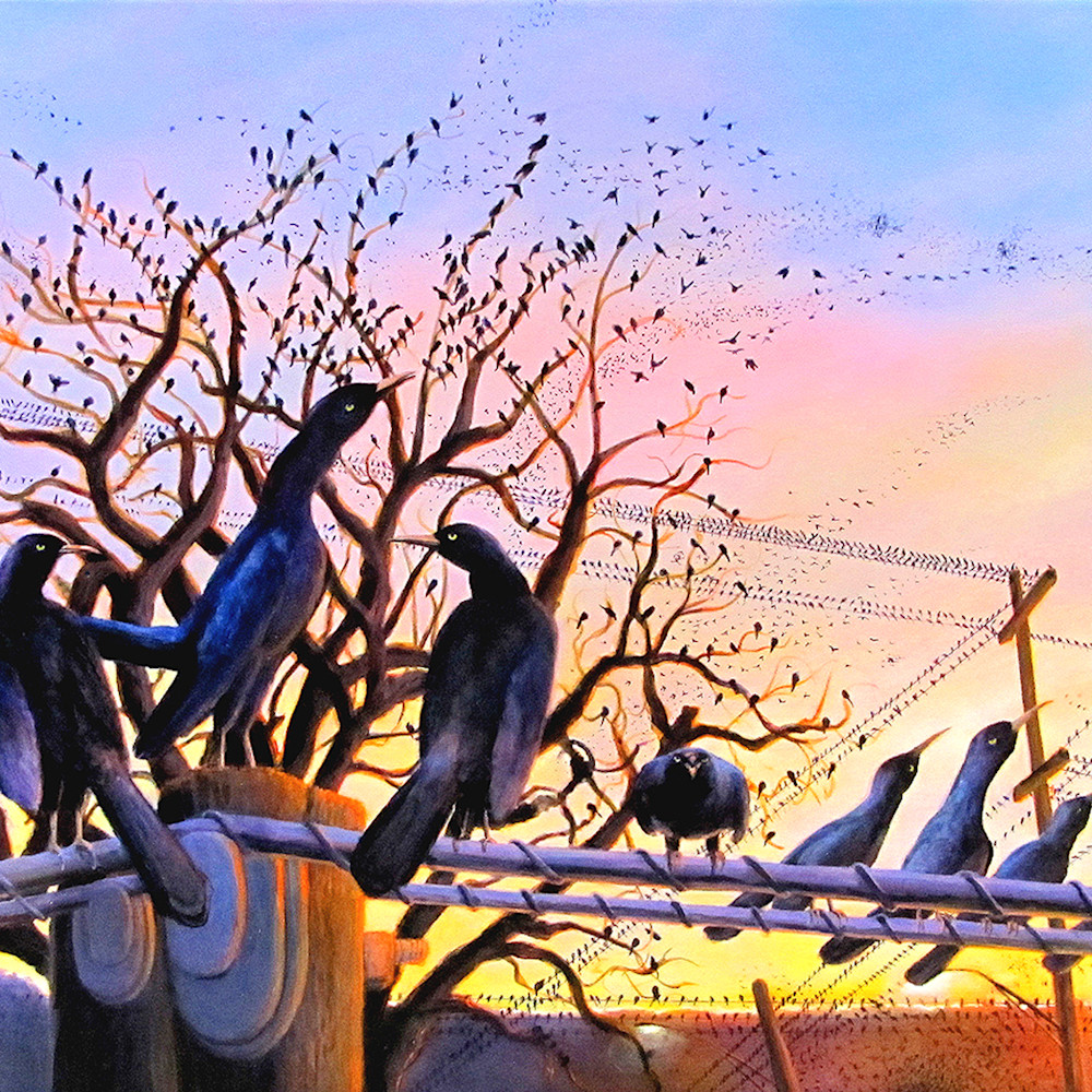 The grackles are coming charles wallis nfau9g