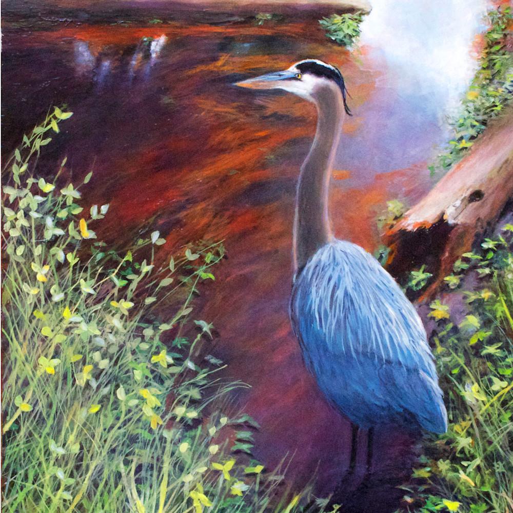 Great blue heron pine slough jgyegk