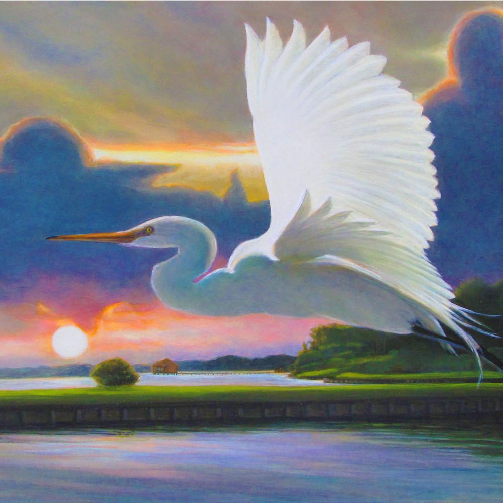 Great white egret sunrise a gpfulv