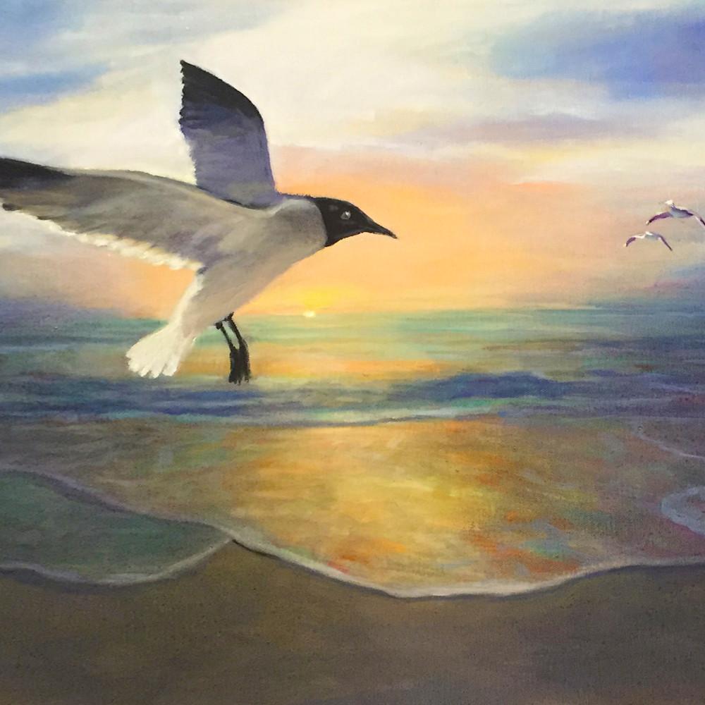 Sea gulls at dawns 300 gphjw0