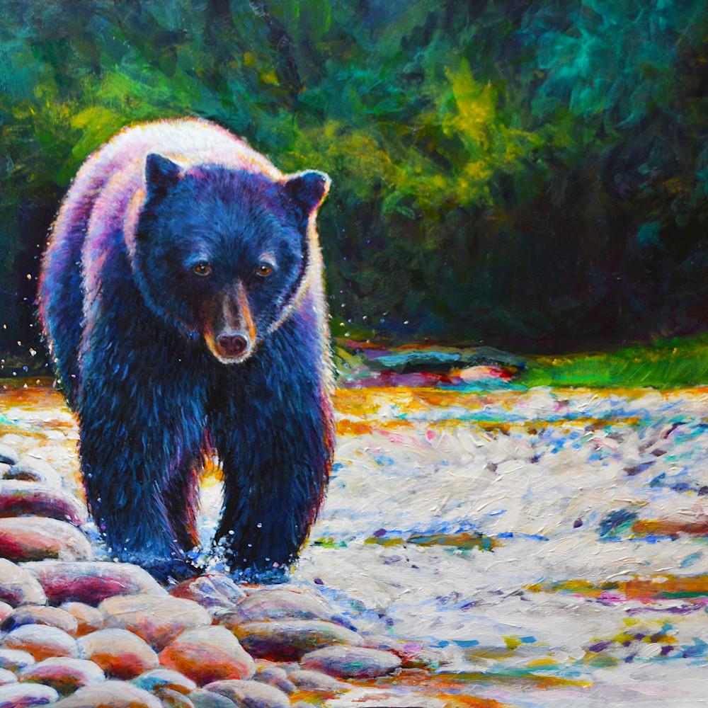 Black bear on the prowl.300.12x18 urkzq0