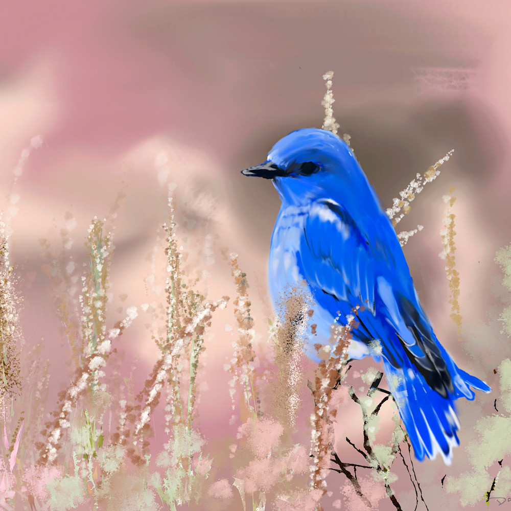 Bluebird print ready kgsrp8