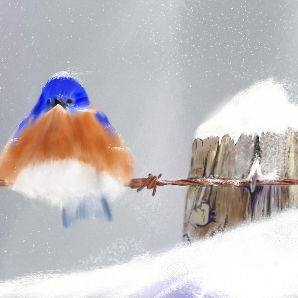 Snowy blue bird print ready hzv7qh