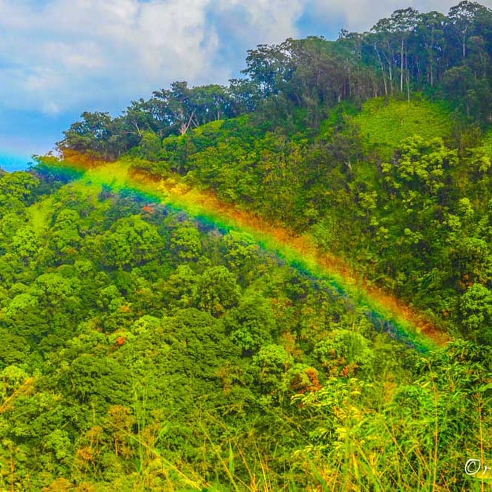 Rainbow valley dqsrae