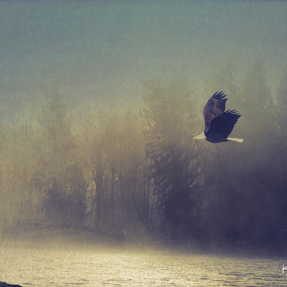 Flight in fog n7jtlk