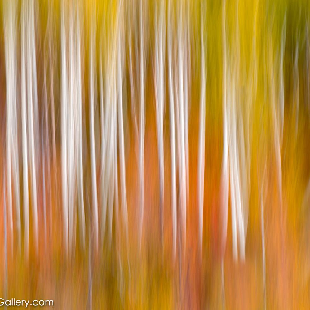 Autumns essence kxodfa